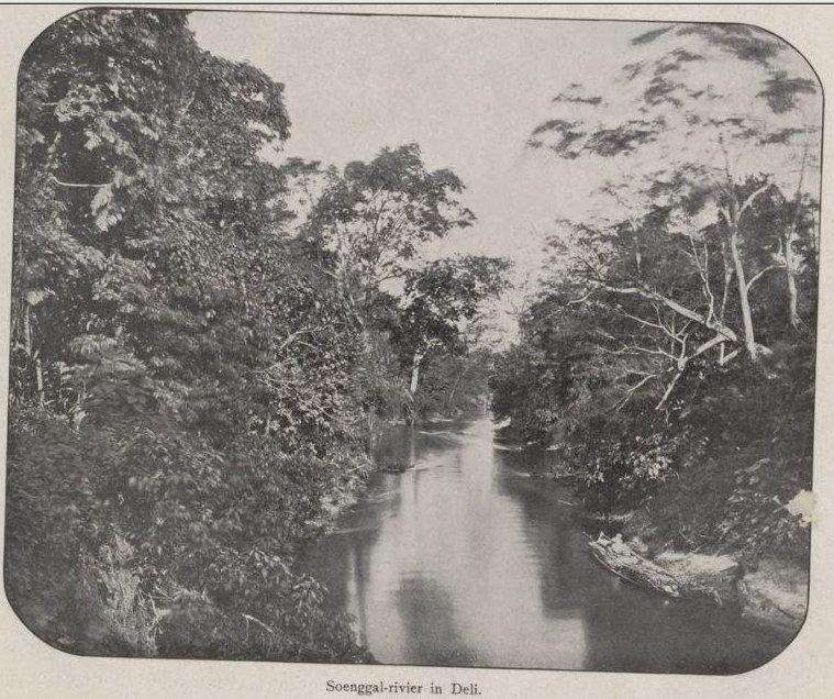 Sungai Sunggal