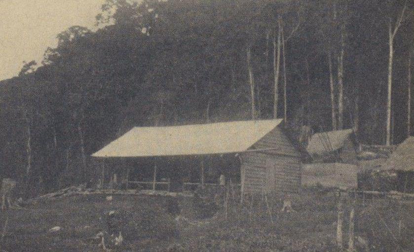 Rumah baru Konijn, meskipun lebih baik dari yang pertama, masih sangat apa adanya.