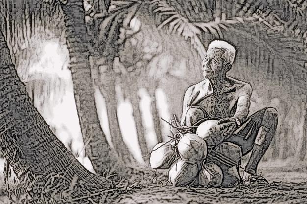 ilustrasi lelaki tua dan kelapa